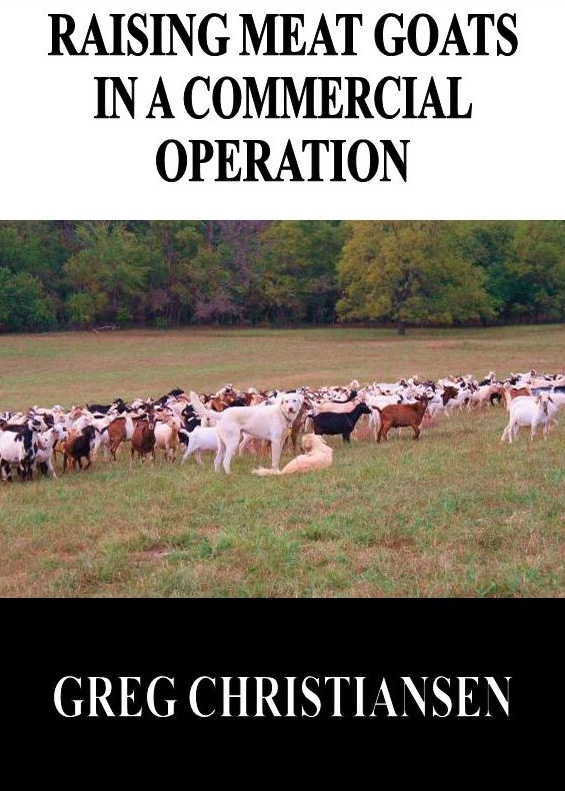 Grandview Livestock